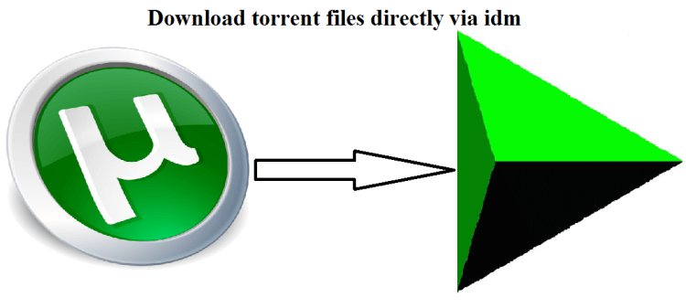 torrent to internet download manager